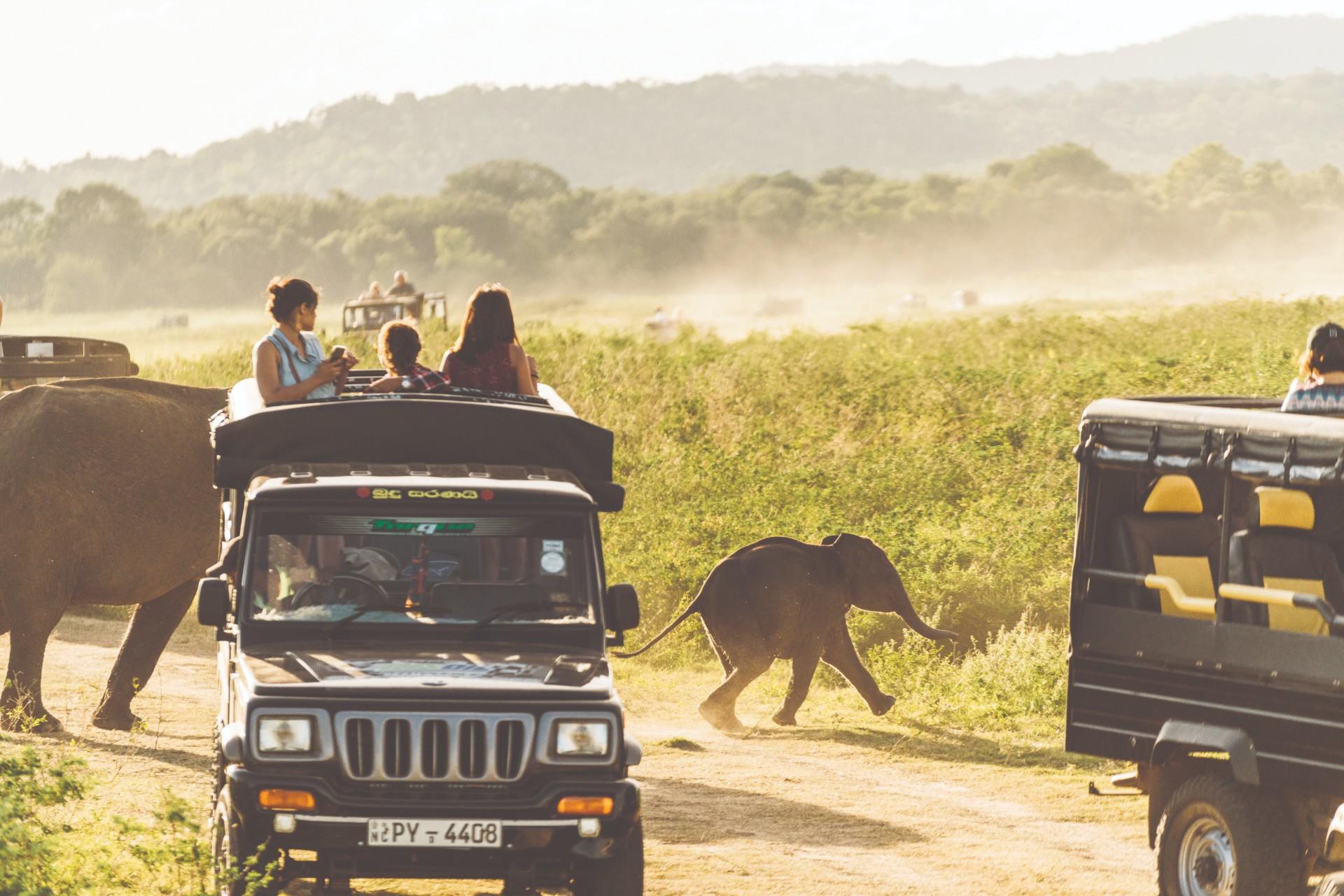 The Gold List 2020 Best International Destination — Sri Lanka