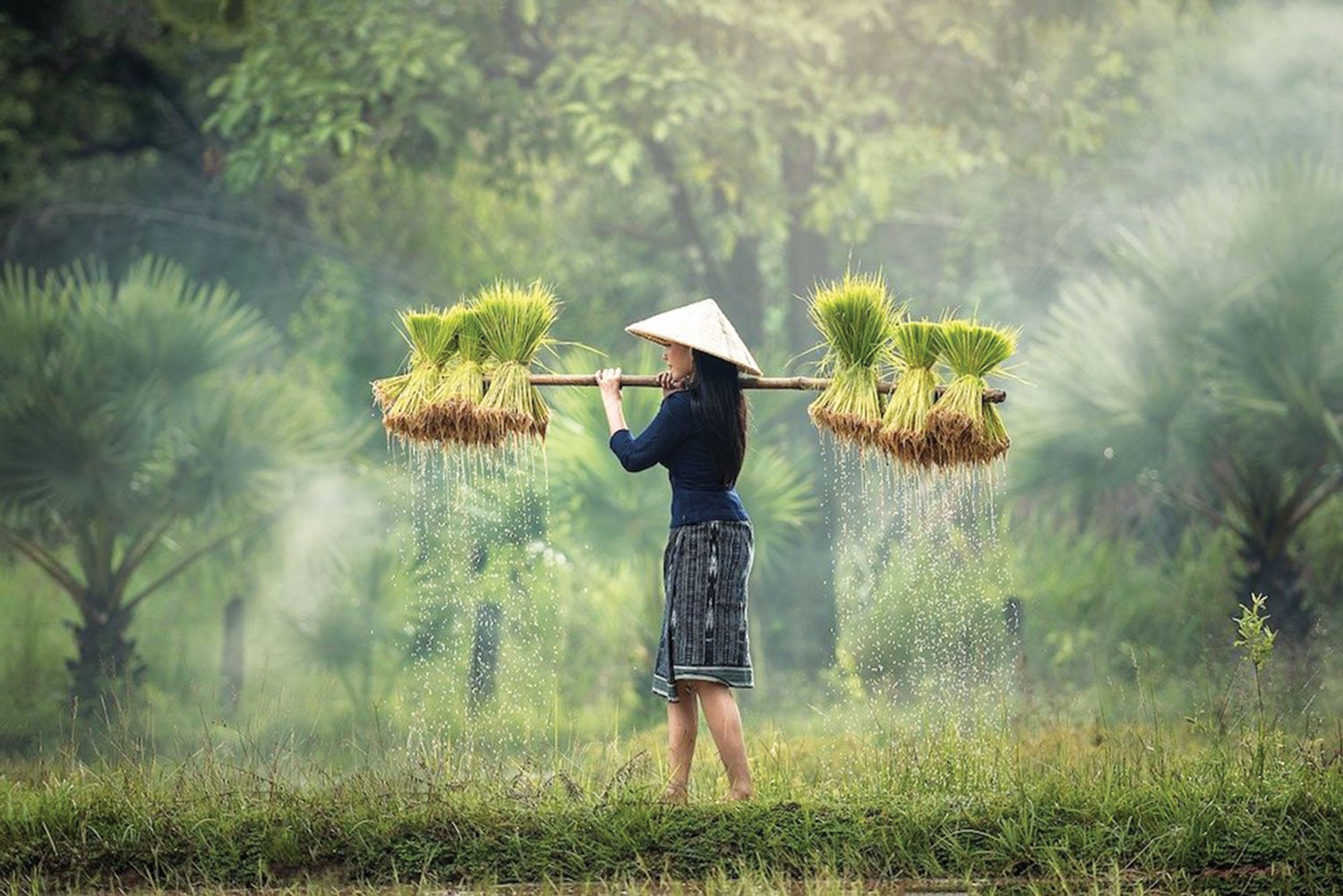 Vietnam: Exceptional Travelling Experience