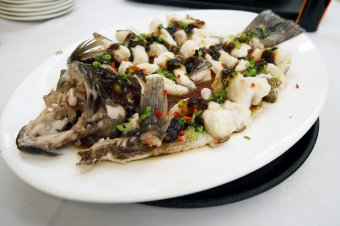 Steamed Grouper Fillet with 3 Kinds of Fermented Bean Paste