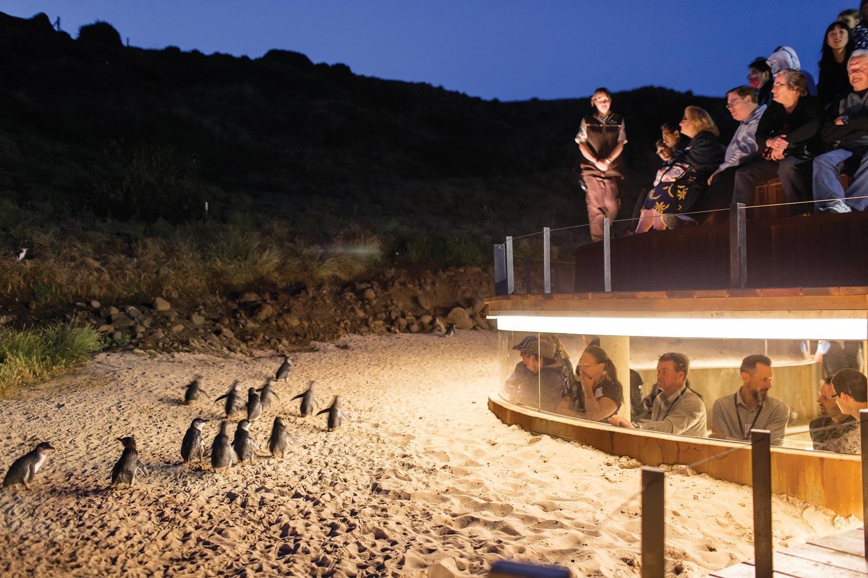 Australia: Amazing Adventures Await You